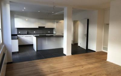 Umbau Wohnung in Zug