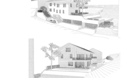 Neubau Doppeleinfamilienhaus in Meienberg